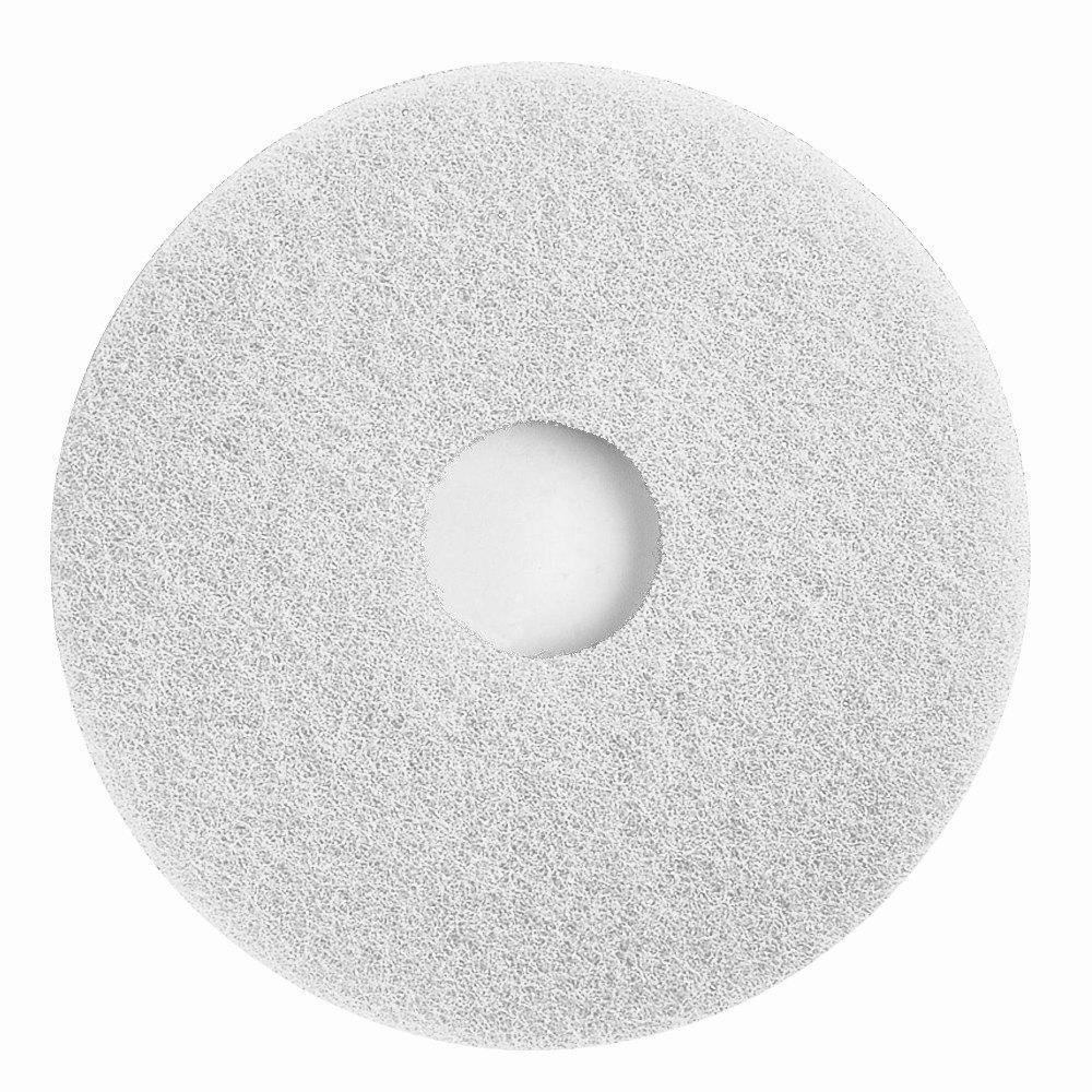 Floor Scrubber Alpha Hygiene